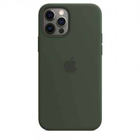 Silicone case Magsafe на iPhone 12/12 Pro (Cyprus green)
