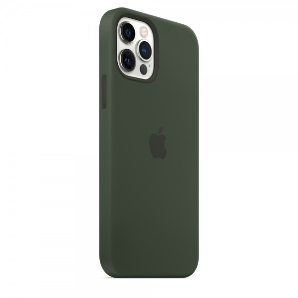Silicone case на iPhone 12 Pro Max (Cyprus Green)